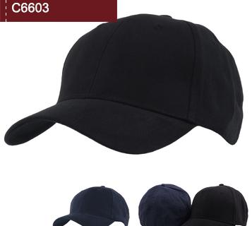 C6603