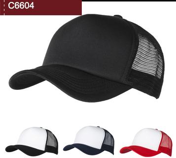 C6604