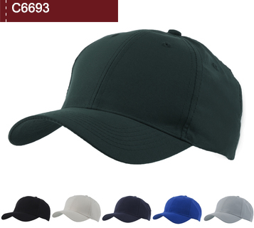 C6693